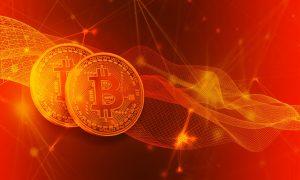 Brieftasche bei Bitcoin Trader